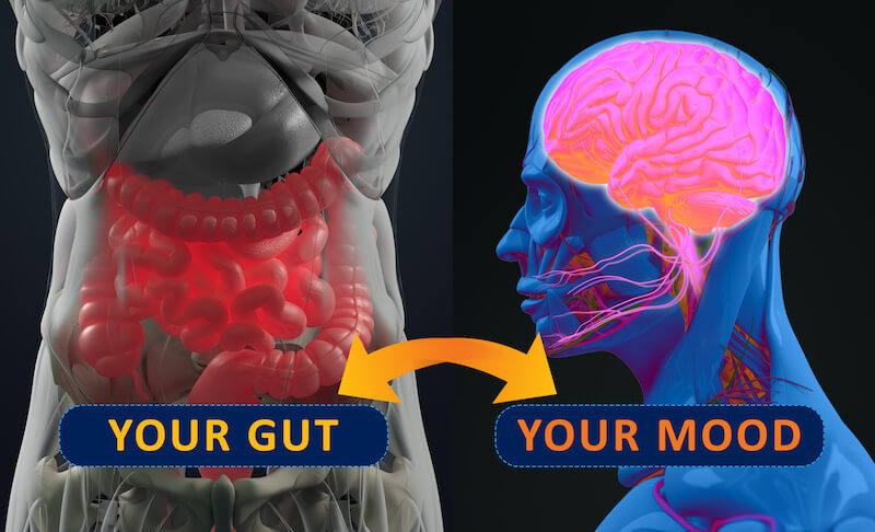 Depression-nutrition-gut-brain-connection